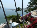dolphin-cove-inn-Dolphin-Cove-Inn-Manzanillo-Ocean-View.jpg