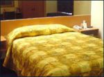 microtel-inn-and-suites-chihuahua-standard.jpg